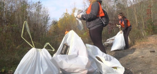 Volunteers scoured the borough for trash and collected it into garbage bags.